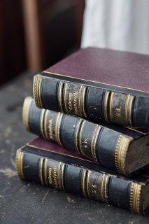 ドイツ古書、重厚な背を並べる-antique german book
