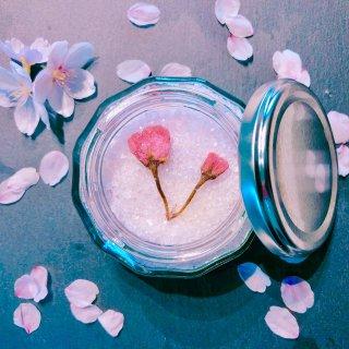 【食品】*4月限定販売*sakura * salt (104g)