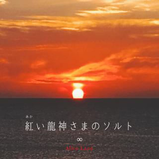 【食品】*限定13こ*紅い龍神さまのソルト (88g)