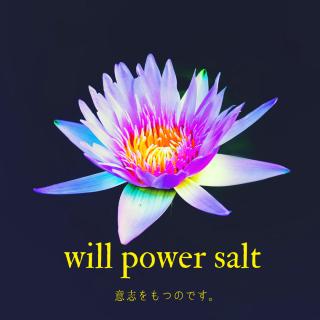 【雑貨】will power salt ー意志を持つのです。ー(240g)