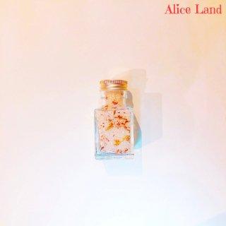 【雑貨】新春おみくじ * fortune salt 3(66g)