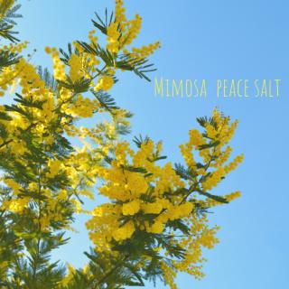 【雑貨】Mimosa peace salt (16g)