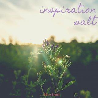 【雑貨】inspiration salt (111g)