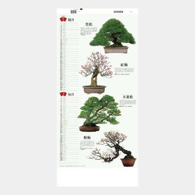 SB-143  盆栽