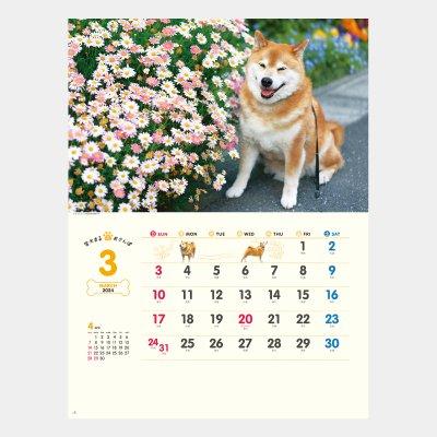 NK-35  柴犬まるとおさんぽカレンダー