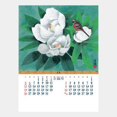 TD-923  花鳥 シャッター・メモ