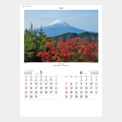 SP-18  富士の四季
