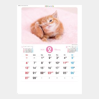 <img class='new_mark_img1' src='https://img.shop-pro.jp/img/new/icons51.gif' style='border:none;display:inline;margin:0px;padding:0px;width:auto;' />SP-65  ラブリードッグ&キャット