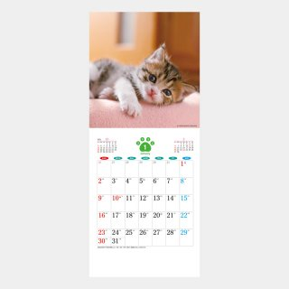 <img class='new_mark_img1' src='https://img.shop-pro.jp/img/new/icons51.gif' style='border:none;display:inline;margin:0px;padding:0px;width:auto;' />SA-30  THE CAT's