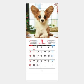 <img class='new_mark_img1' src='https://img.shop-pro.jp/img/new/icons51.gif' style='border:none;display:inline;margin:0px;padding:0px;width:auto;' />SM-100  Pretty Dogs