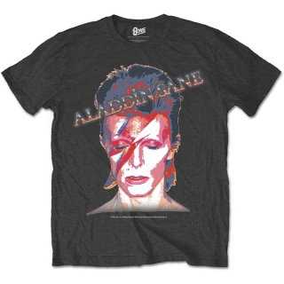 DAVID BOWIE Aladdin Sane Grey, Tシャツ