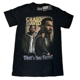 CRAIG DAVID What's Your Flava Homage, Tシャツ