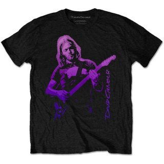 DAVID GILMOUR Pig Gradient, Tシャツ<img class='new_mark_img2' src='https://img.shop-pro.jp/img/new/icons5.gif' style='border:none;display:inline;margin:0px;padding:0px;width:auto;' />