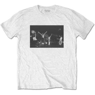 QUEEN Crowd Shot, Tシャツ<img class='new_mark_img2' src='https://img.shop-pro.jp/img/new/icons5.gif' style='border:none;display:inline;margin:0px;padding:0px;width:auto;' />