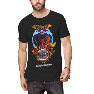 THIN LIZZY Vagabond, Tシャツ<img class='new_mark_img2' src='https://img.shop-pro.jp/img/new/icons5.gif' style='border:none;display:inline;margin:0px;padding:0px;width:auto;' />