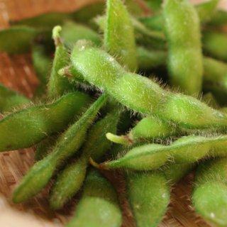 有機黒五葉枝豆 少量セット(3袋)