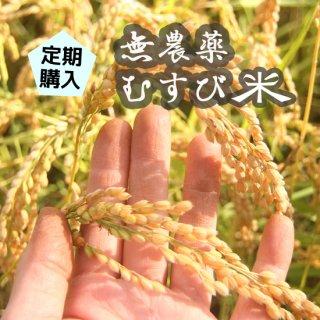 【定期購入】無農薬むすび米