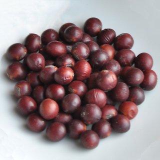 無農薬紅大豆1kg