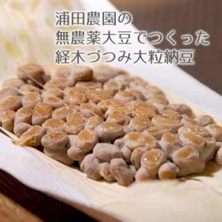 大粒納豆24個【送料込】