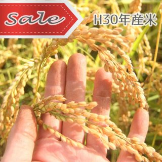 H30年産★SALE★むすび米(無農薬)