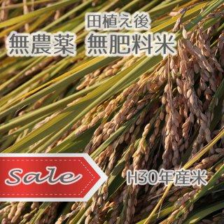 H30年産★SALE★むすび米(無肥料無農薬)