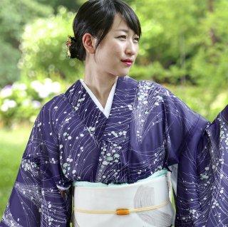 【夏着物/洗える小紋[絽]】菊芝草柄
