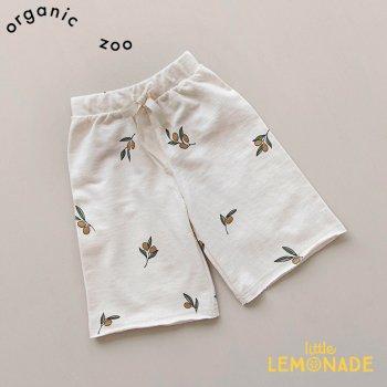 【organic zoo】 オリーブ柄 ワイドボトムス パンツ 0-6か月/6-12か月/1-2歳/2-3歳 Olive Garden Wide Leg  オーガニックズー OLOZ
