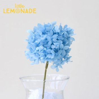【あじさい茎付き/ブルー】 プリザーブドフラワー ドライフラワー  青 紫陽花 onoen  (01528-611)