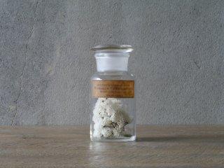 型吹きガラスの試薬瓶 S  No.03