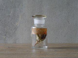 型吹きガラスの試薬瓶 S  No.13