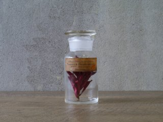 型吹きガラスの試薬瓶 S  No.16