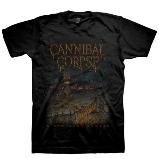 CANNIBAL CORPSE Skeletal Domain Fall 2015 Dates, Tシャツ