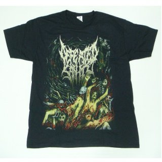 DEFEATED SANITY Psalms Of The Moribund, Tシャツ