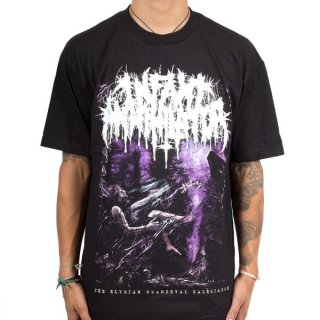 INFANT ANNIHILATOR The Elysian Grandeval Galeriarch, Tシャツ