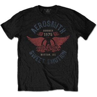 AEROSMITH Sweet Emotion, Tシャツ