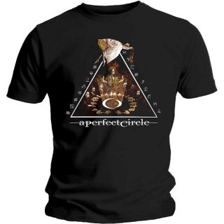 A PERFECT CIRCLE Surrender, Tシャツ