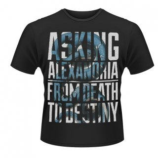 ASKING ALEXANDRIA Snakes, Tシャツ<img class='new_mark_img2' src='//img.shop-pro.jp/img/new/icons5.gif' style='border:none;display:inline;margin:0px;padding:0px;width:auto;' />