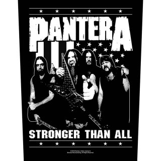 PANTERA Stronger Than All, バックパッチ<img class='new_mark_img2' src='https://img.shop-pro.jp/img/new/icons5.gif' style='border:none;display:inline;margin:0px;padding:0px;width:auto;' />