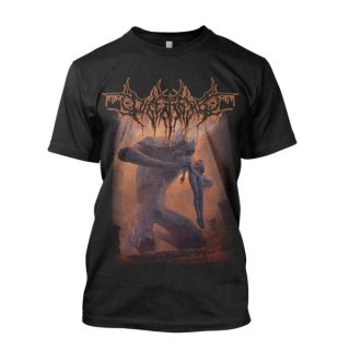 DISENTOMB The Decaying Light, Tシャツ
