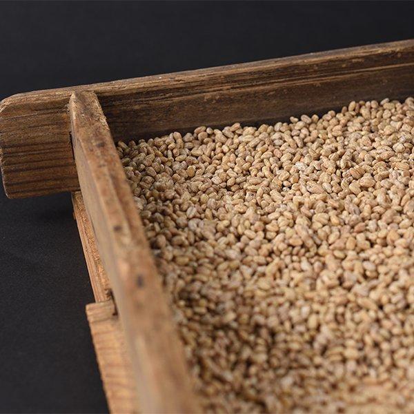 麦こうじ 1kg