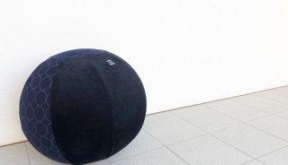 バランスボールのカバー:直径50cm用 ダウンロード