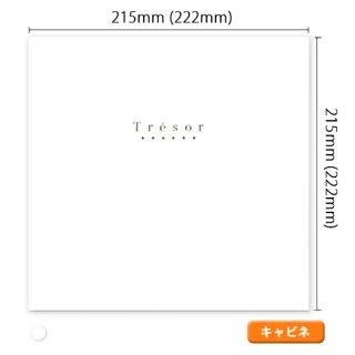 Tresor(トレジャー)キャビネサイズ 全1色