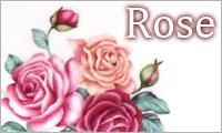 Rose / バラ雑貨・アクセサリーArt
