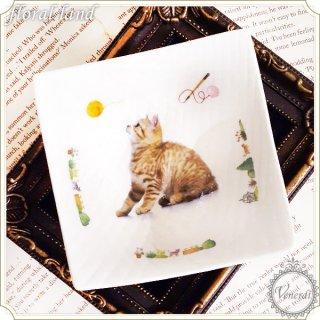 ポーセラーツ 小皿 / 猫