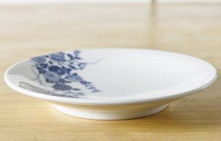 WP75 和皿 白×青 菊