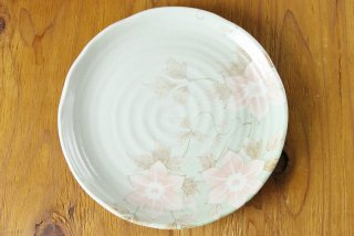 WP92 和皿・白・花