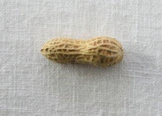 HO042 箸置き/ピーナッツ(黄)