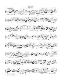 【ソプラノ・サクソフォーン 独奏 楽譜】<br>スキーマ <br>作曲:アンドリュー・ミード<br>