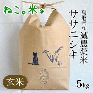 ササニシキ玄米5kg
