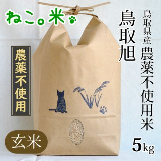 鳥取旭玄米5kg